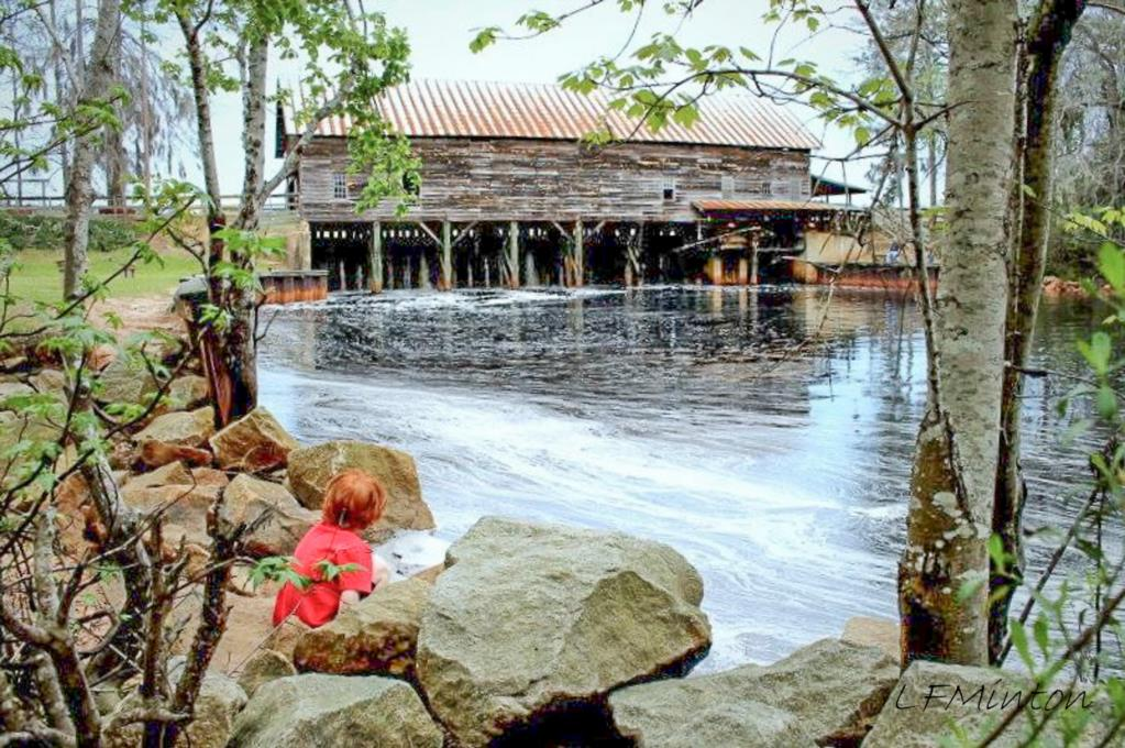 Twin City Is Home To George L Smith State Park A Jewel In The Georgias System And One Of Only Two Gristmills Working Order